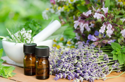 Herbs and Essential Oils Rumney